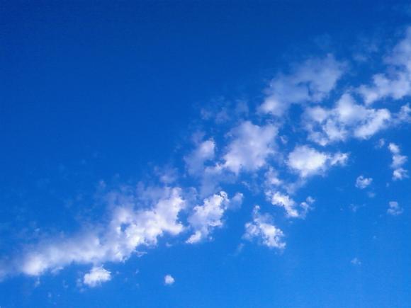 http://happy-bambou.cowblog.fr/images/SPA2457.jpg